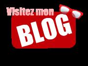 visitezmonblog